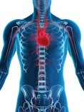 Cardioscan apparatuur